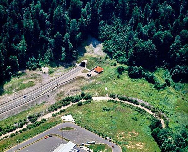 Tuneli Izvedeni Projekti
